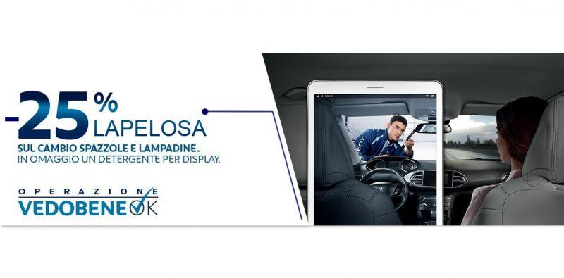 Offerta servizio cambio spazzole tergicristallo anteriori  Peugeot Atena Lucana - Lapelosa
