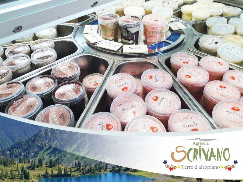 offerta gelati artigianali silani - promozione yougurt artigianale silano
