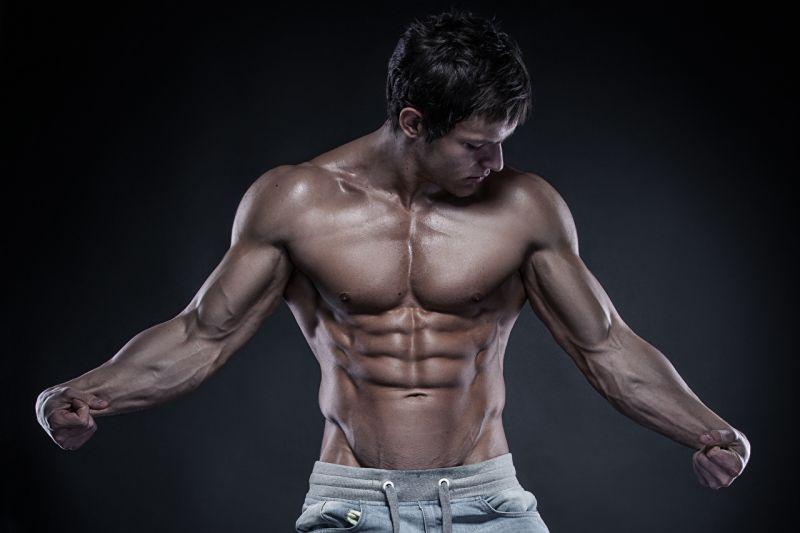 BODY BUILDING / Palestra Wellness Evolution a Imperia