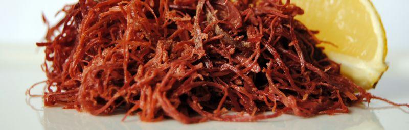 offerta carne di qualità italiana macelleria equina - occasione insaccati equini salumi padova