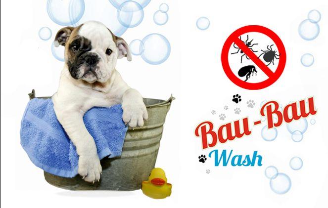 offerta trattamento parassitario cane - toeletta con trattamento antiparassitario
