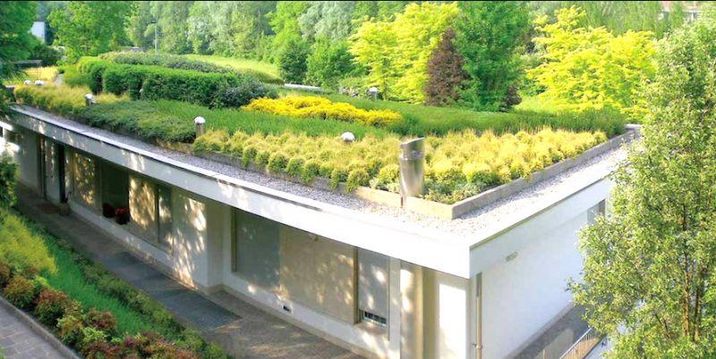 offerta ripasso tetto tegole - occasione realizzazione giardino pensile tetto verde vicenza