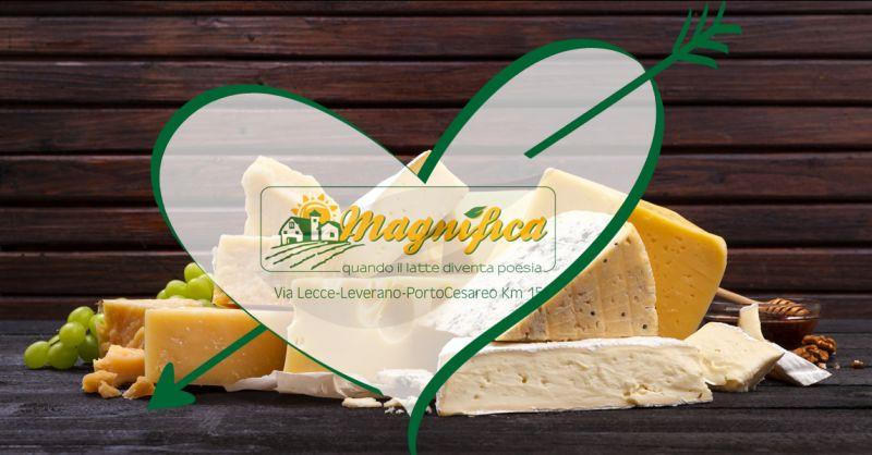 Offerta vendita prodotti caseari prima scelta - Occasione formaggi freschi a Lecce e provincia
