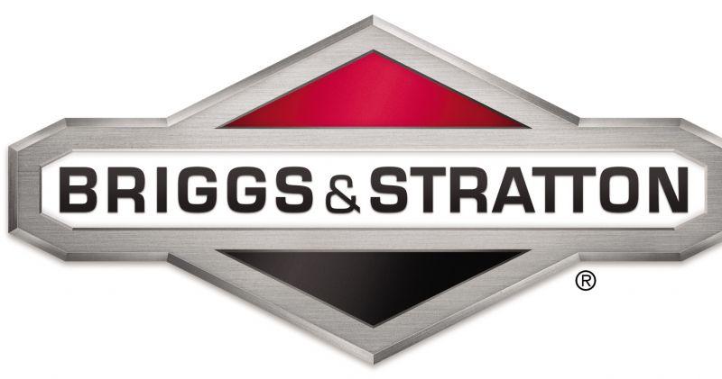 riparazioni ricambi briggs&stratton-assistenza briggs&stratton