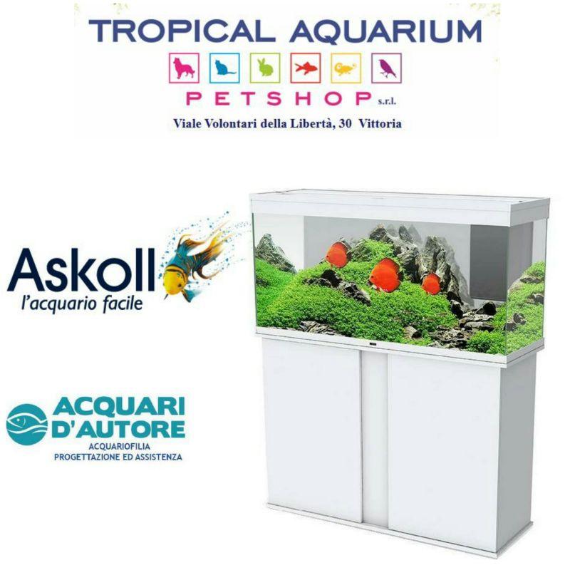Acquario scontato Askoll