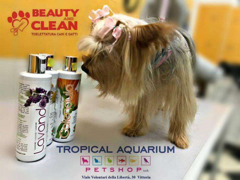 Shampoo Officinalis Dalla Grana - Shampoo ideale per gli amici a 4 zampe