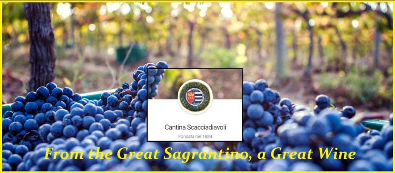SCACCIADIAVOLI WINERIES IN UMBRIA - OFFER SALE PRODUCTION montefalco sagrantino ITALIAN wines