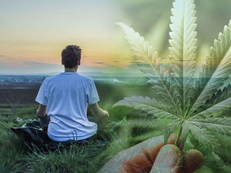 offerta vendita canapa legale - cannabis legale in tabaccheria