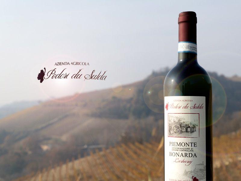 Offerta vendita vino artigianale Bonarda - Promozione distribuzione vino Piemontese Bonarda