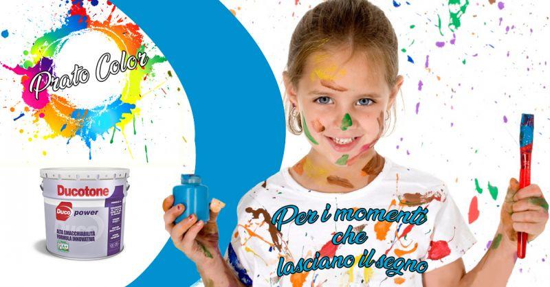 Offerta vendita e distribuzione pittura antimacchia professionale per pareti  - Prato Color