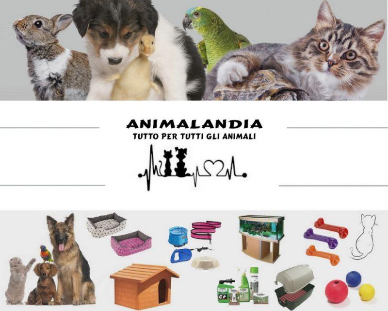 ANIMALANDIA SAN GAVINO - PRODOTTI E ACCESSORI PER CANI GATTI E ANIMALI DOMESTICI