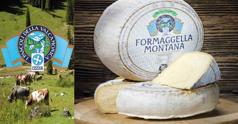 offerta vendita FORMAGGELLA MONTANA - occasione produzione formaggi tipici lombardi