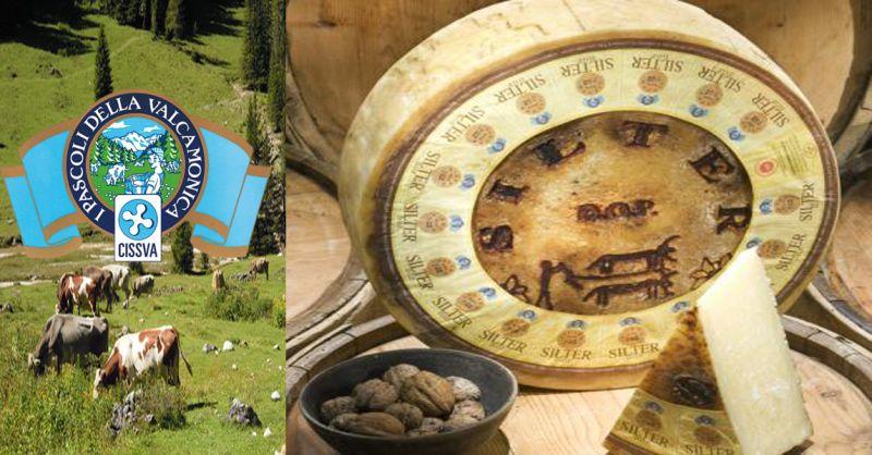 offerta vendita SILTER DOP formaggio tipico - occasione formaggo stagionato tipici italiani
