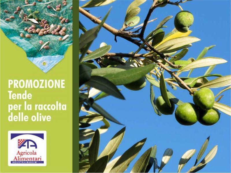 Offerta tende per raccolta olive - promozione teloni olive - Agricola Alimentari Paceco