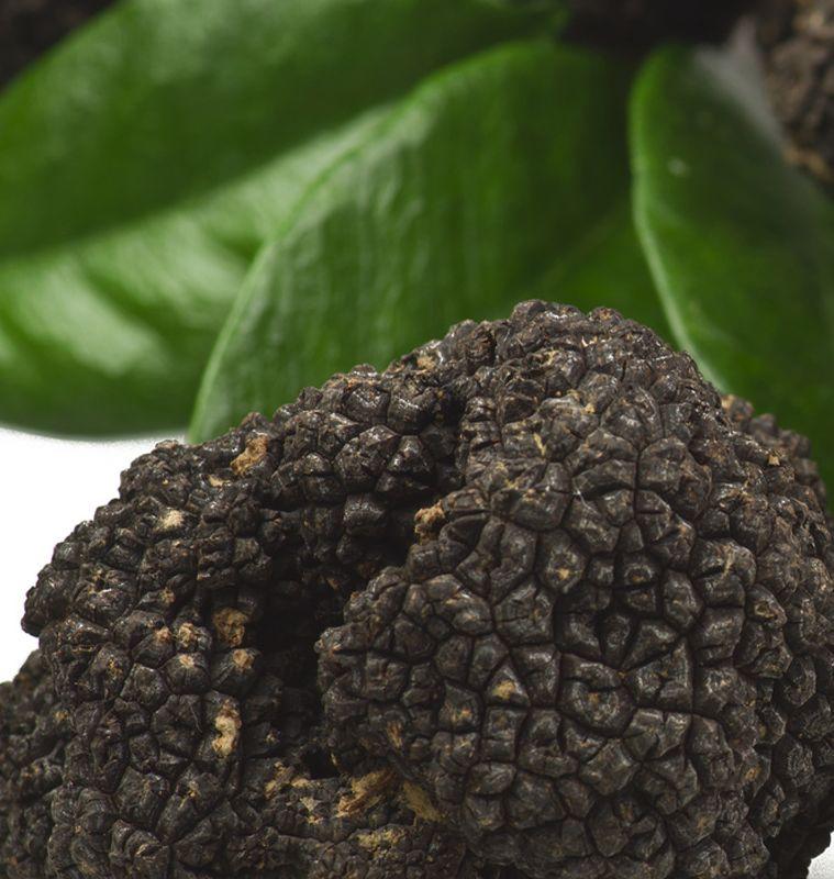 promozione offerta menu con tartufo nero bergamo
