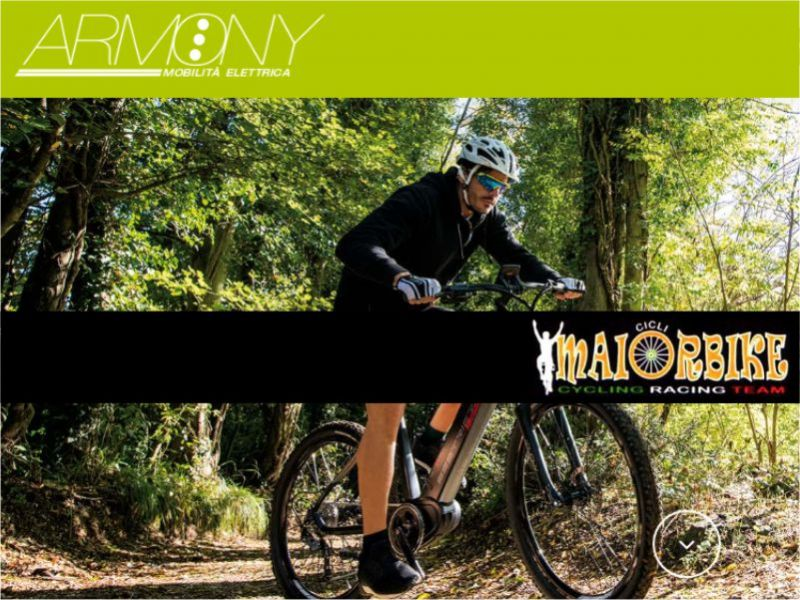 Offerta bici armony - promozione bici pedalata assistita - Maior Bike