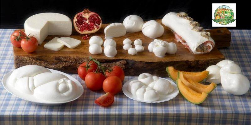 Promozione formaggi a Siena - Offerta Caseificio Nuovo Poggibonsi