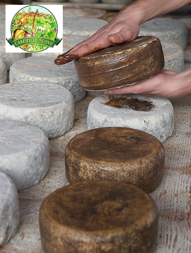 Promozione formaggi toscani - Offerta vendita formaggi in provincia di Siena