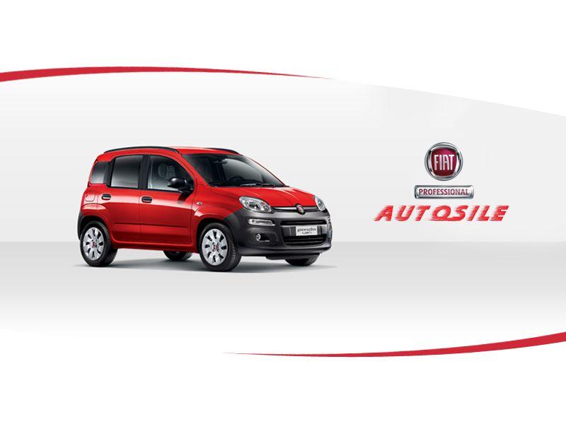 Offerta vendita auto Fiat Professional Treviso - Promozione distribuzione auto FiatProfessional