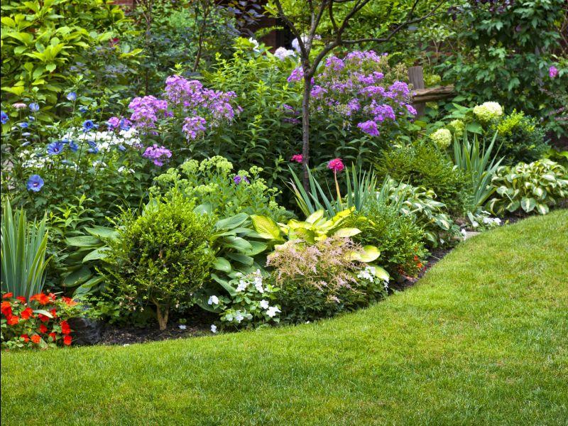 servizio manutenzione e articoli da giardinaggio