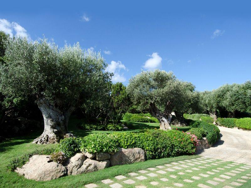 progettazione giardino valorizziamo i tuoi spazi