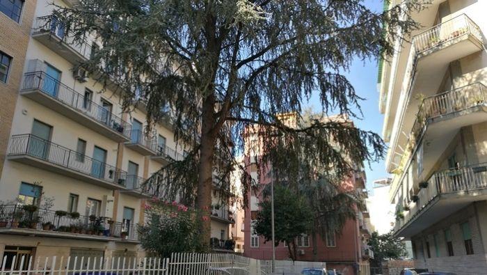 Immobiliare Sannio propone in vendita box auto di mq 16 a Benevento.