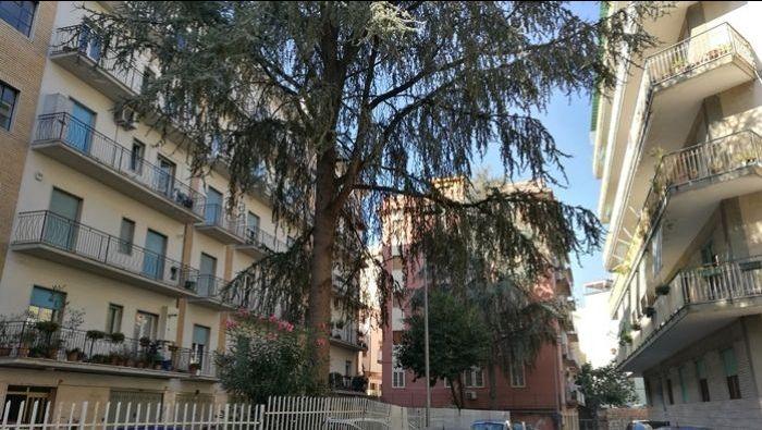 vendita box auto di mq 16 a Benevento - Immobiliare Sannio