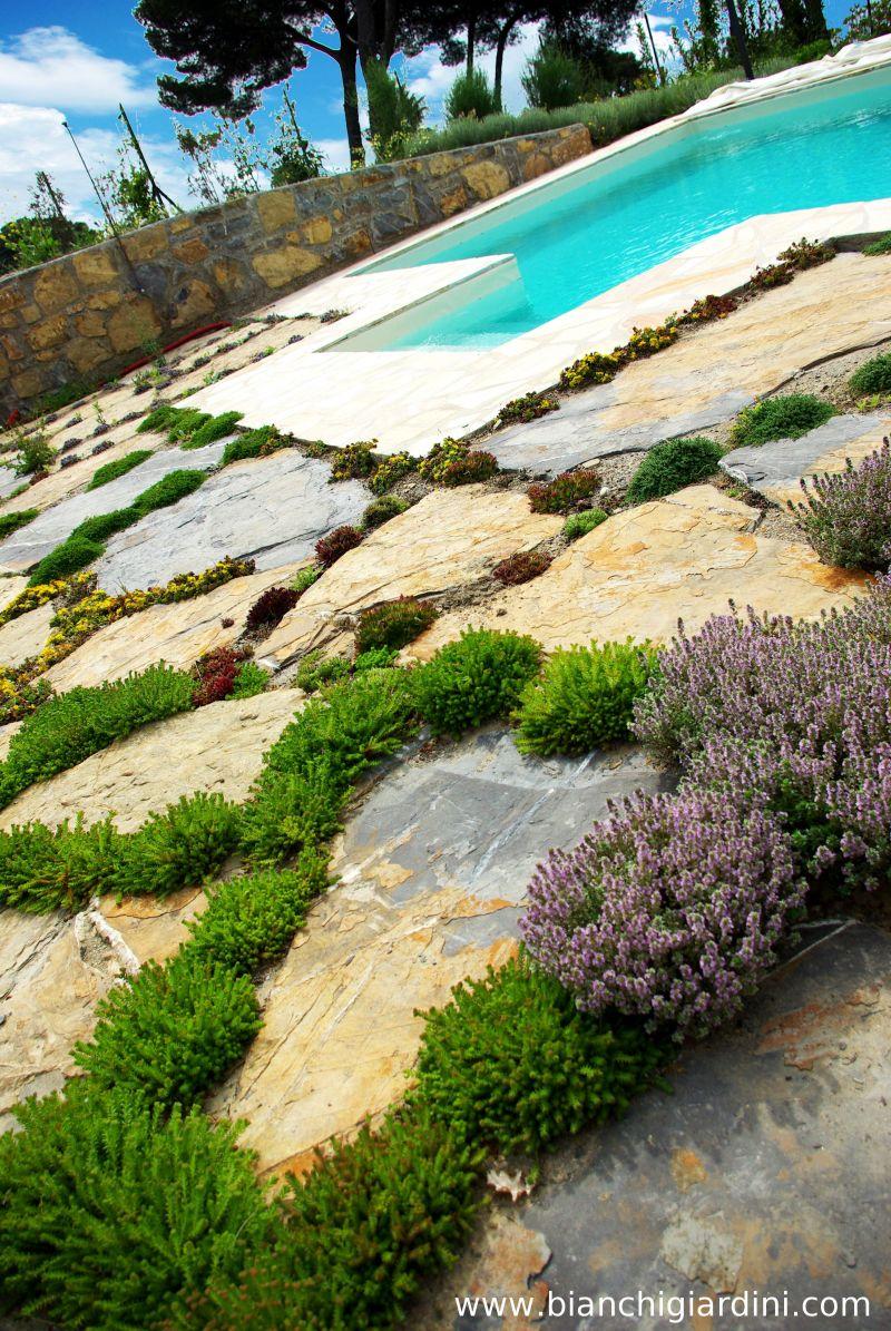 manutenzione piscine imperia savona costa azzurra