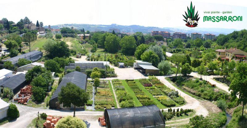 offerta realizzazione giardini ponte san giovanni - promozione vivaio ponte san giovanni