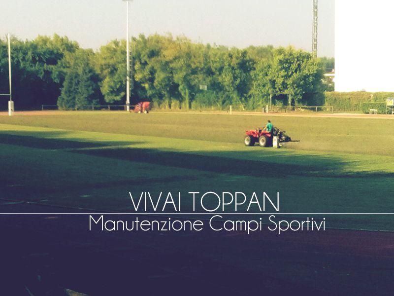 Offerta Manutenzione Campi Sportivi - Promozione Campi da Calcio - Vivai Toppan