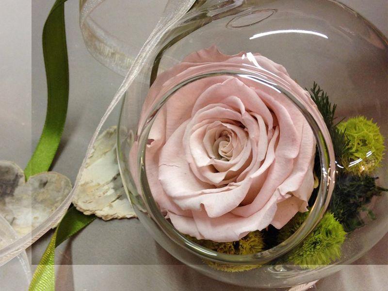 Promozione laboratorio floreale Treviso - Offerta Fiori vetro Treviso - Fioreria Guscio Verde