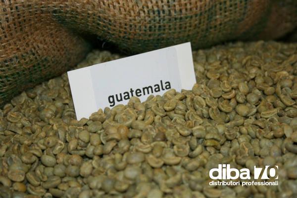 manca il timbro niente caffe per il guatemala i mercati snobbano i report diba 70 distributori professionali rassegna stampa
