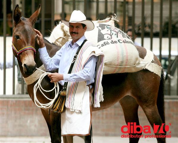 Boom produttivo per i caffè colombiani - Diba 70 distributori professionali, rassegna stampa