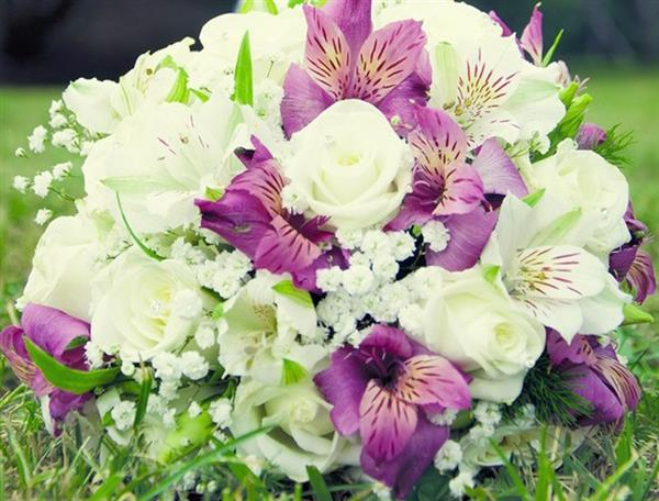 da dg fioridea splendide composizioni floreali scopri