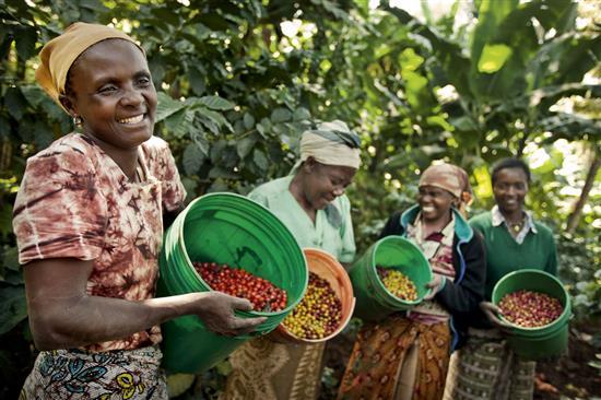 Cambiare il mondo con una tazzina di caffè - Diba 70 distributori professionali, rassegna stampa