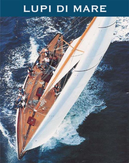 da lupi di mare trovi tutto quello che ti serve per la tua imbarcazione scopri ora