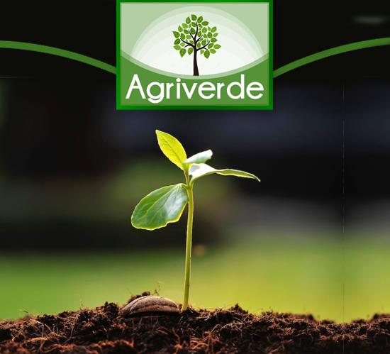 agriverde vendita piante per orto e giardino scopri di piu