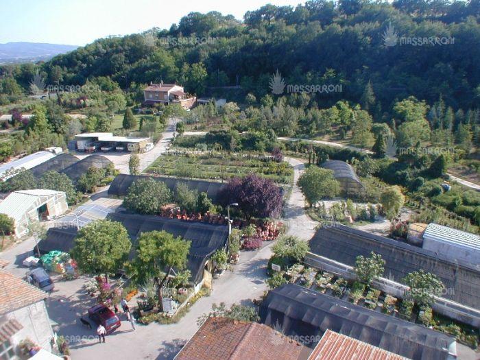 FABRIZIO Perugia foto 2