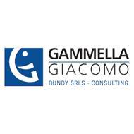 GAMMELLA GIACOMO - BUNDY CONSALTING