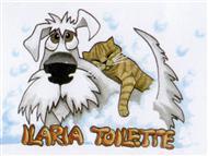 Ilaria Toilette Cani e Gatti