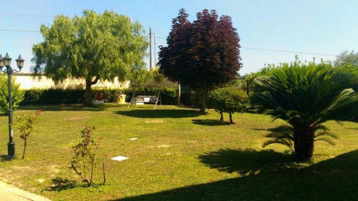 Offerta Affitto Villa Con Piscina Francavilla Al Sihappy