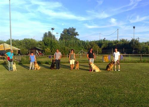 DOUBLE J FOR DOGS Vezzano Ligure foto 14
