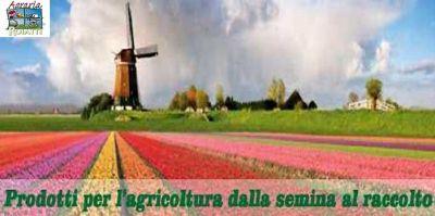 lagraria roiatti occasione vendita prodotti per semina offerta fertilizzanti e mangimi