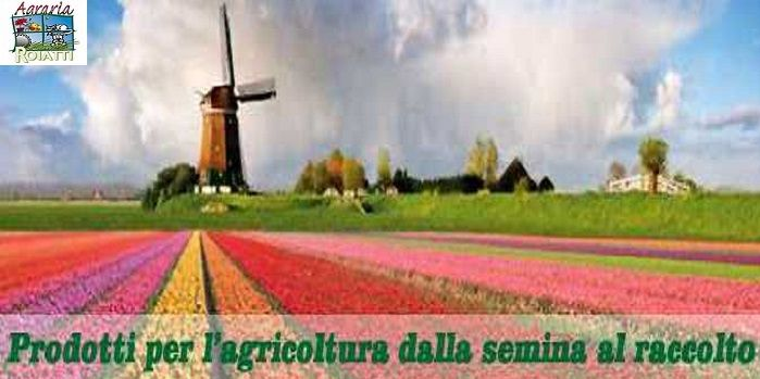 L'Agraria Roiatti occasione vendita prodotti per semina - offerta fertilizzanti e mangimi