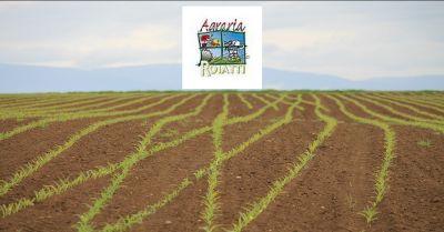 offerta vendita di prodotti per lagricoltura udine occasione produzione agricola udine