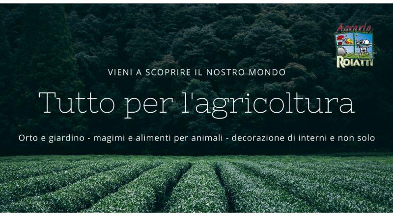 Offerta sementi per orto garantite in vendita a Udine – Vendita mangimi per animali a Udine