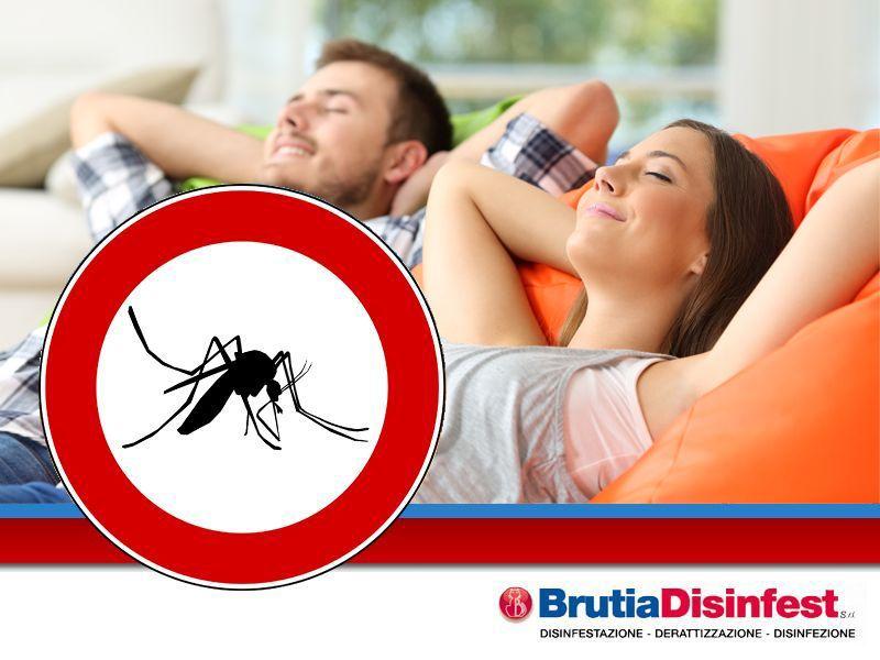 offerta ditta disinfestazione zanzare insetti - servizio disinfestazioni professionali