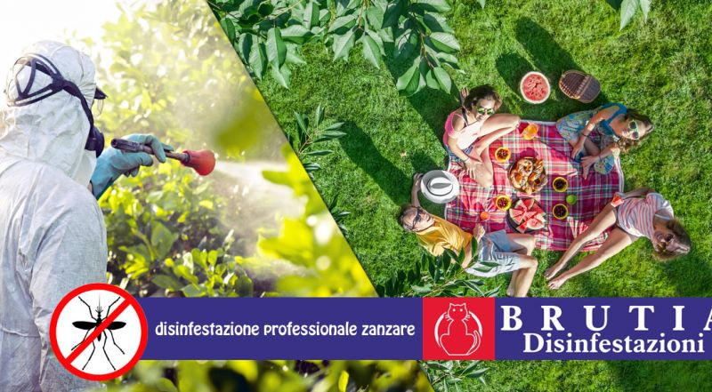 Offerta disinfestazione zanzare professionale cosenza - promozione trattamento antizanzare giardino cosenza