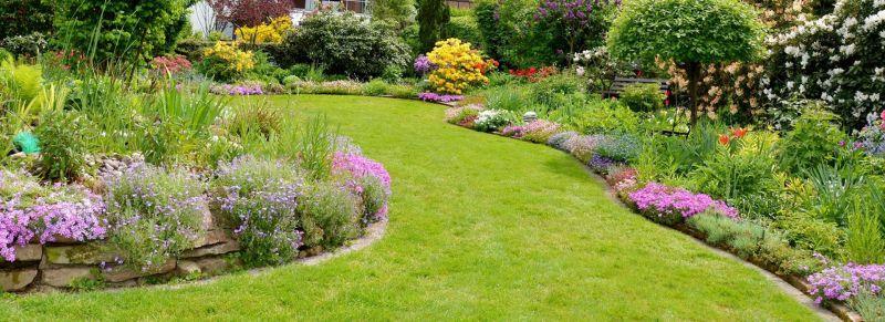 offerta progettazione realizzazione parchi giardini vicenza promozione piante da frutto fiori