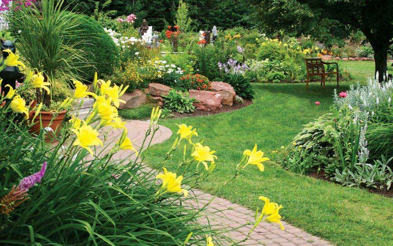 offerta progettazione giardini occasione semina fornitura manti erbosi vicenza